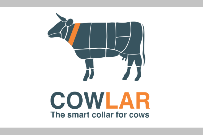 Pakistani startup Cowlar accepted by Y Combinator in winter 2017 batch