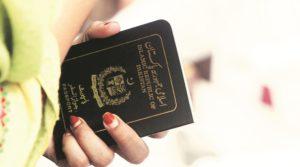 online visa system