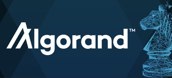 Algorand: Innovation in Blockchain Technologies